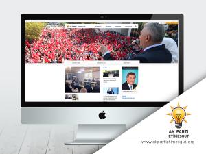 Web Sitesi Ankara